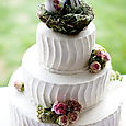 10659cake-weddingcake-birdcaketopper-butterresize